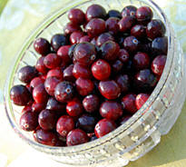 Cranberry Salad Recipe from Heritage Recipes